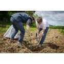 1 arbre planté  Reforest'Action