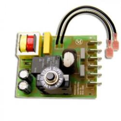 Module électronique 10 Amp avec fils